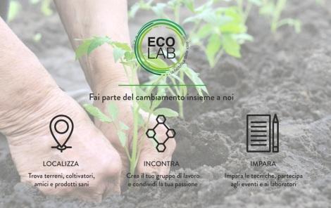 ecolab-infograph